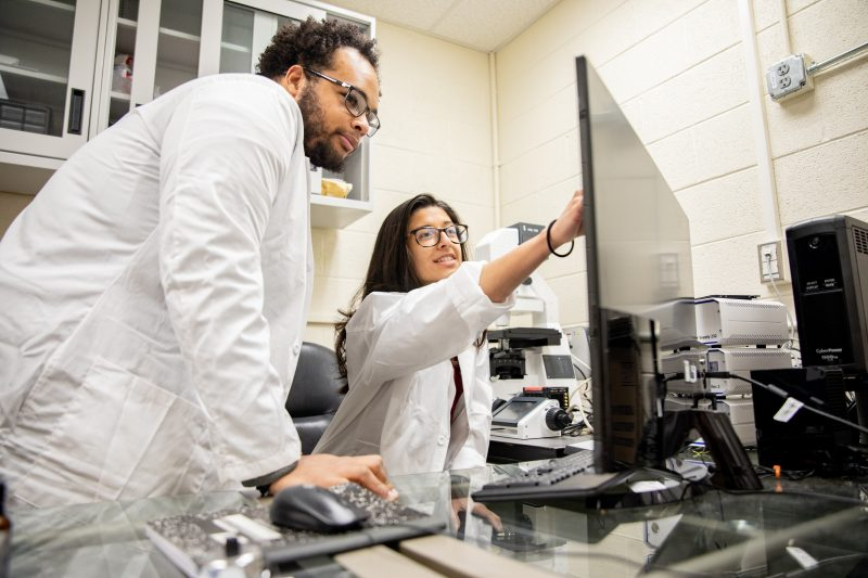 Two students working in a lab and looking at results on a computer