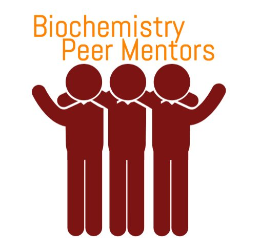 peer mentoring Since 2003, yess institute has led over 30 multi-year peer mentoring programs in metro denver school districts serving thousands of students.